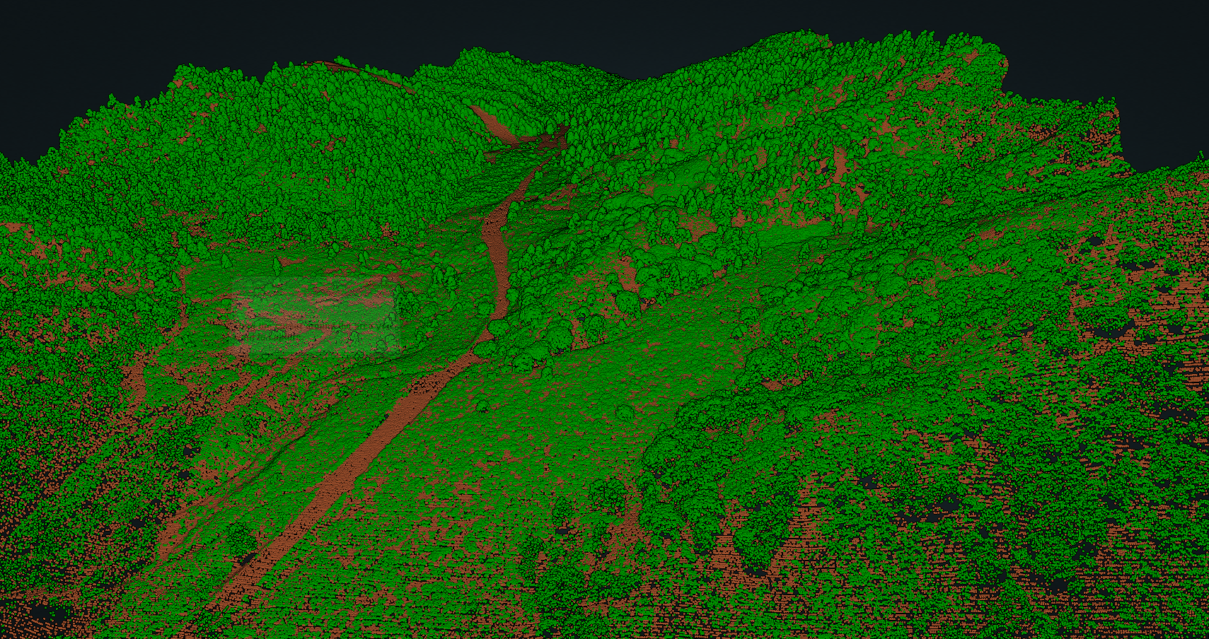 Forest cover and ground point cloud classifications in San Gabriel Mountains near Wrightville, California, along the southern San Andreas fault.