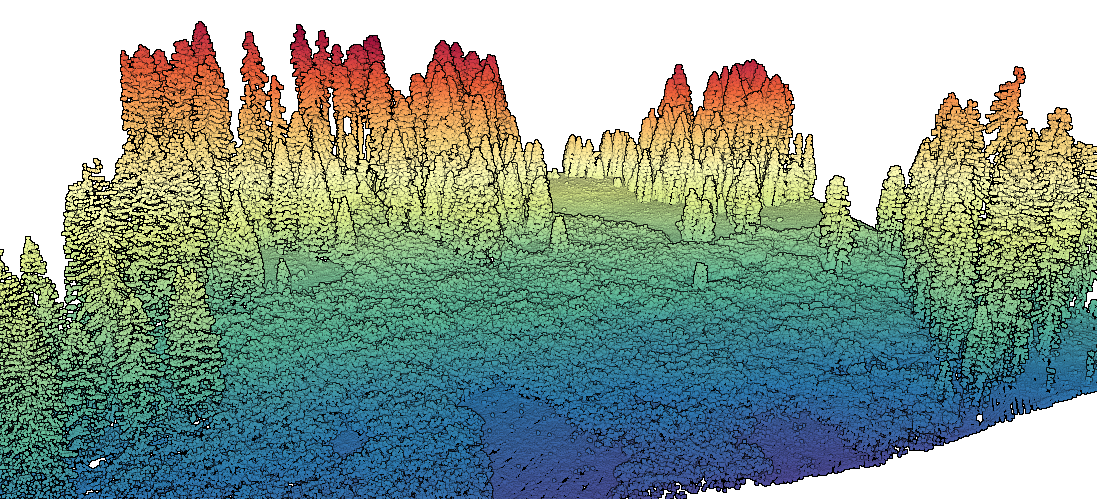 Point Cloud of Forested Meadow