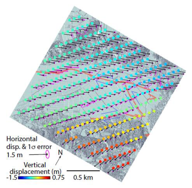 Coseismic surface displacements