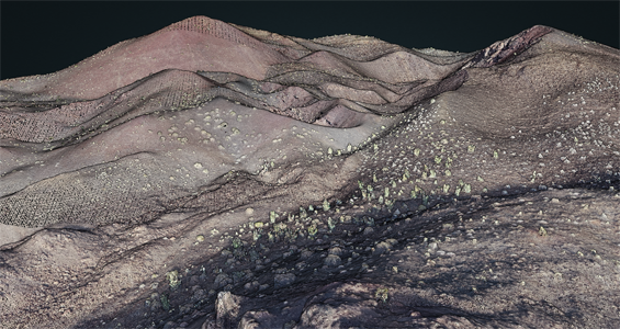 Tecolote Volcano point cloud visualization from photogrammetry